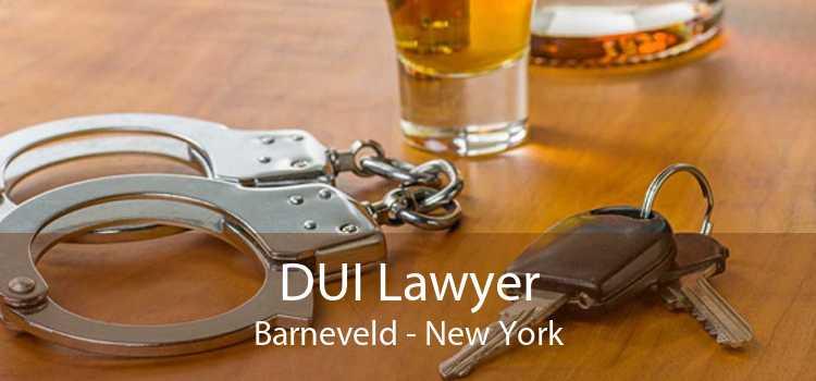DUI Lawyer Barneveld - New York